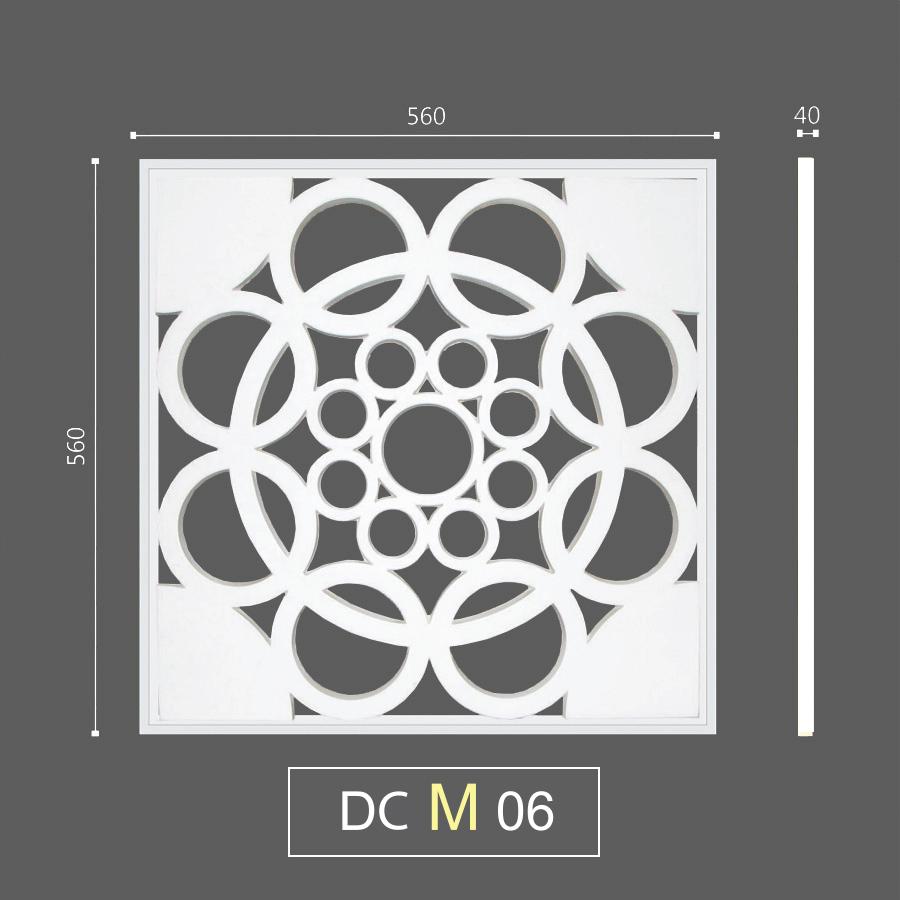 DCM 06