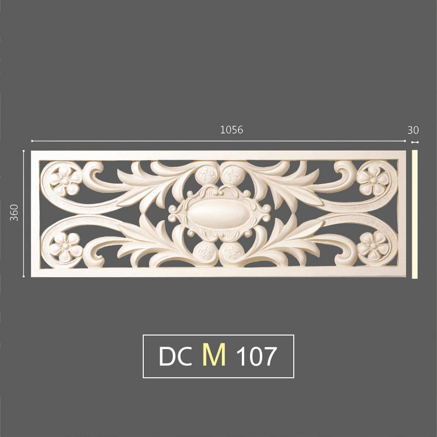 DCM 107