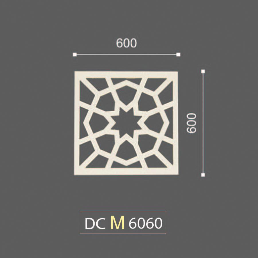 DCM 6060