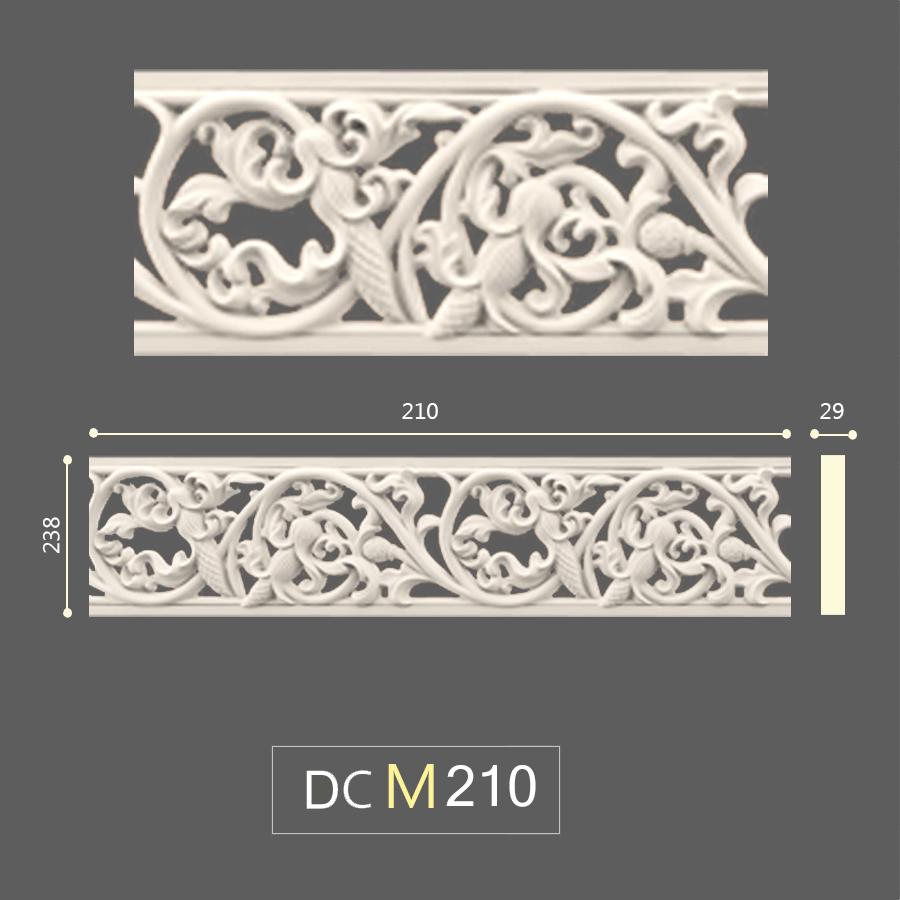 DCM 210