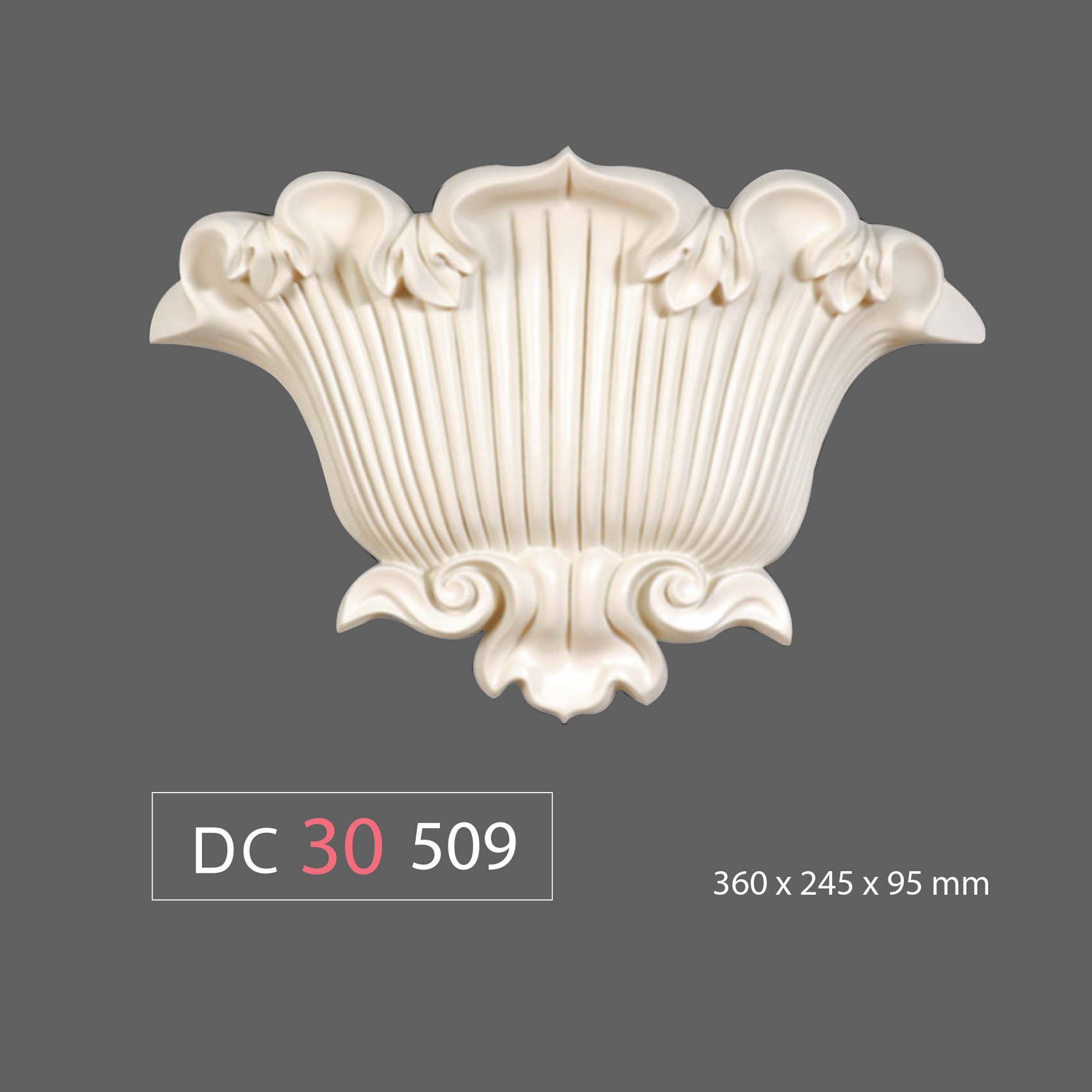 DC30 509