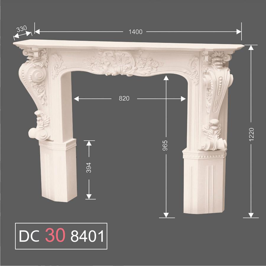 DC30 8401